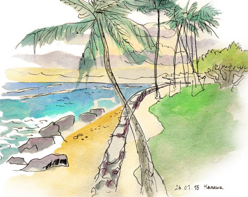 Julie Blaquié Hawai Carnet de Voyage