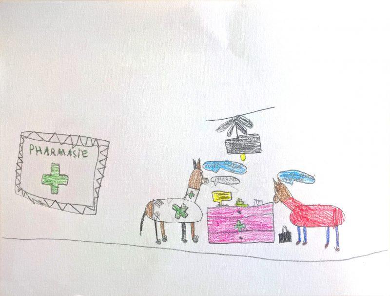 dessiner des animaux, dessin chiens, illustration Bordeaux, Julie Blaquié