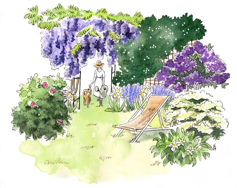 illustration bordeaux, illustration de jardin, croquis jardin